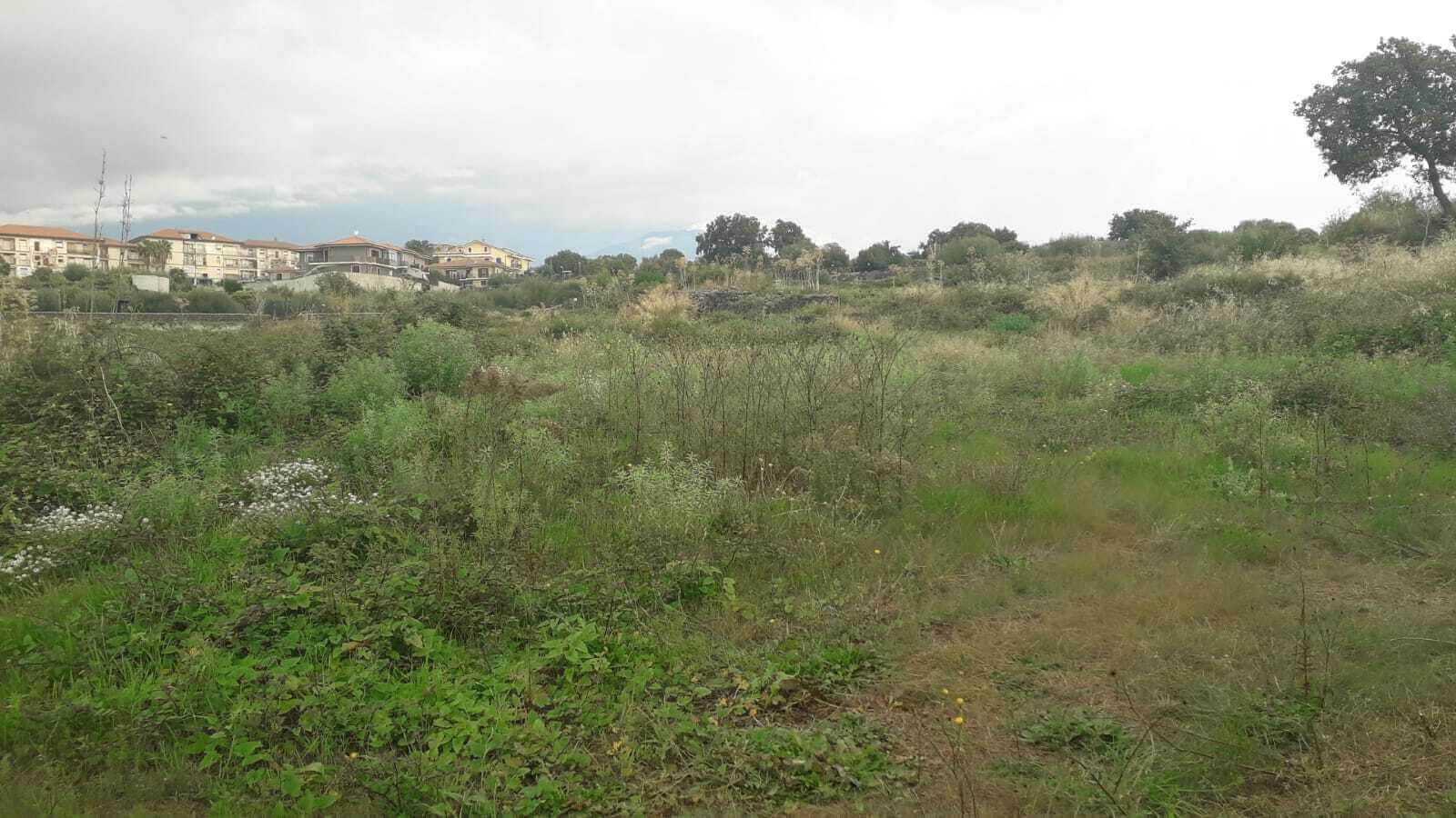 PM083 Terreno sito a San Pietro Clarenza